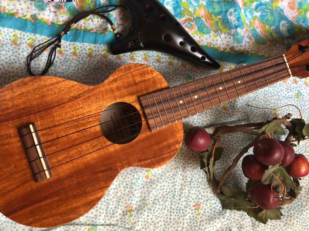 楽器って楽しい!癒しの音色ならウクレレとオカリナ趣味におすすめ?