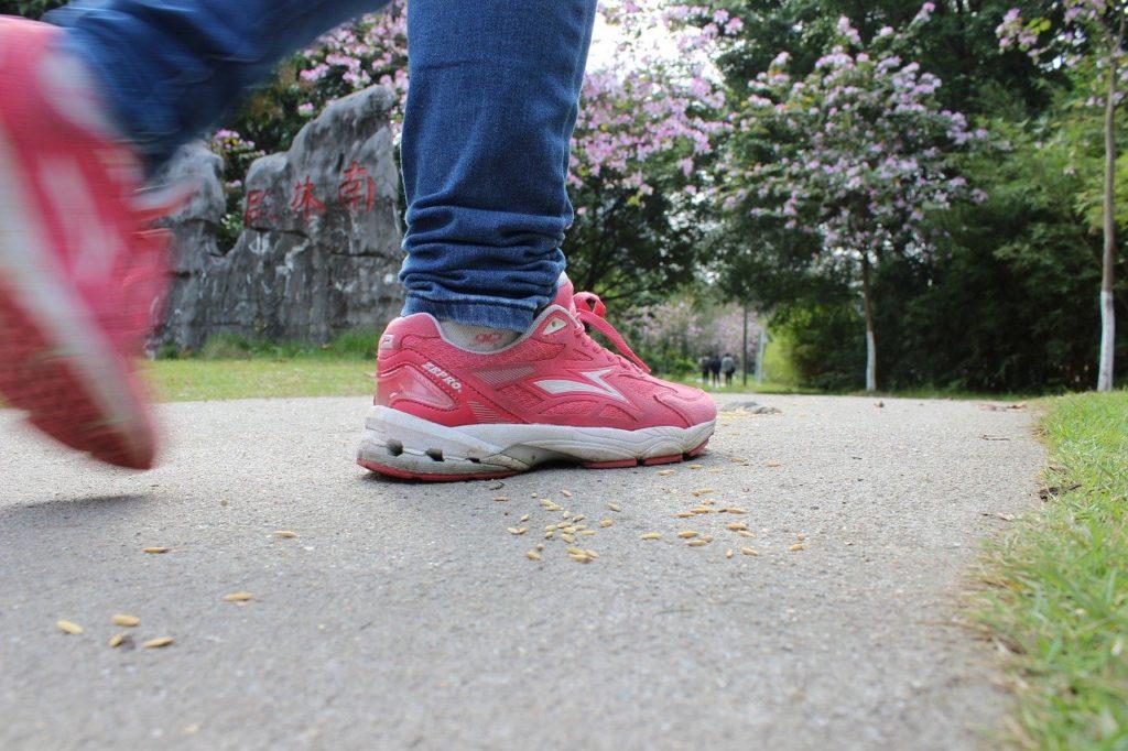 「老いは足から」の危機感!歩くの嫌いな私が意識変えたら散歩ファン