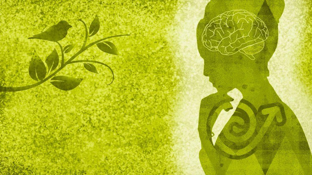 音楽が人にもたらすポジティブ効果と脳の活性化について